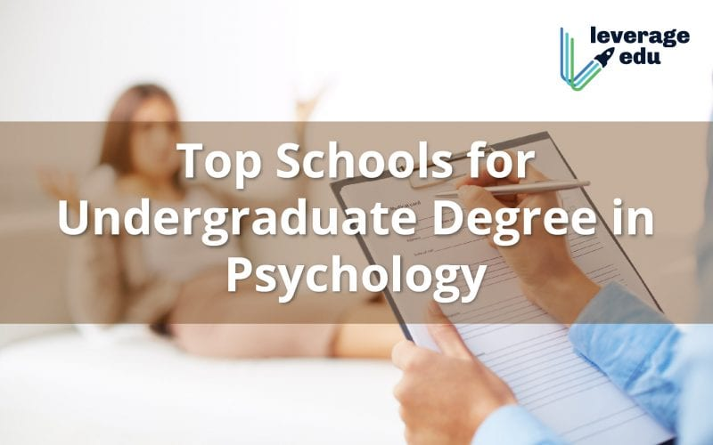 Top Universities for Bachelors Degree in Psychology