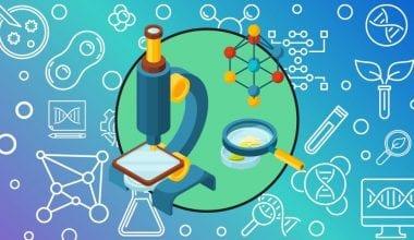BSc Biotechnology
