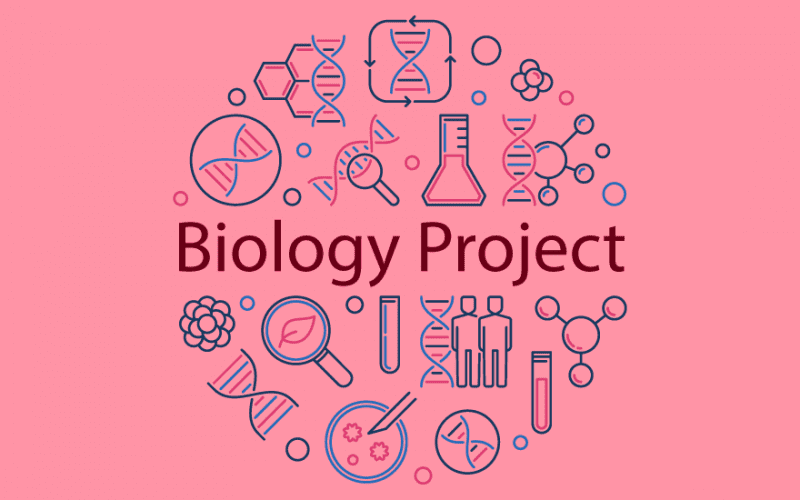 Biology Project for Class 11