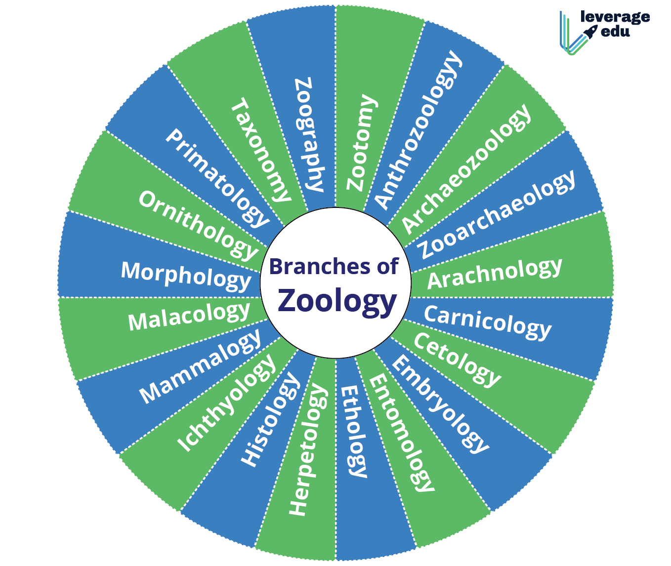 Branches Of Zoology-01  1