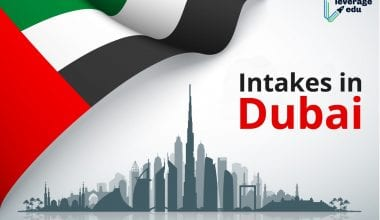 Intakes in Dubai
